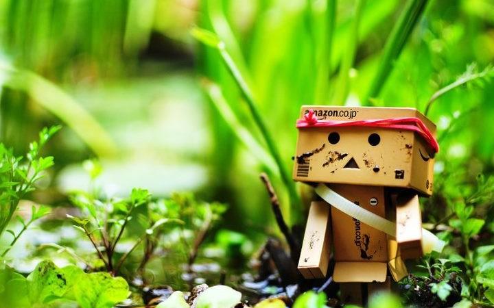 Запознайте се с картонения робот Danbo!