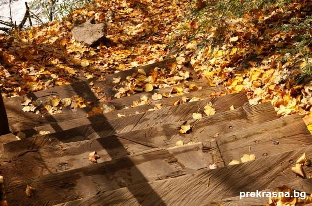 красива есен