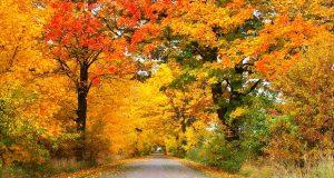 есен здраве правила