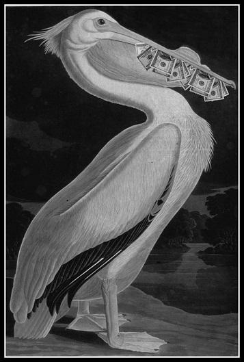 Пеликанът, който носи пари