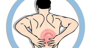 здрав гръб