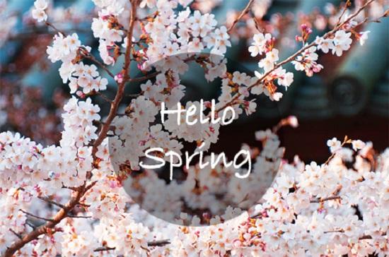 Пролетен здравен хороскоп за всички зодии