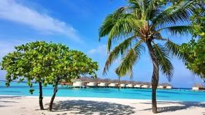 Малдивите - бял ситен пясък и кристално чиста вода