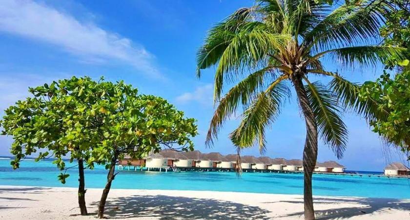 Райски ваканции, които всеки заслужава! (ВИДЕО)