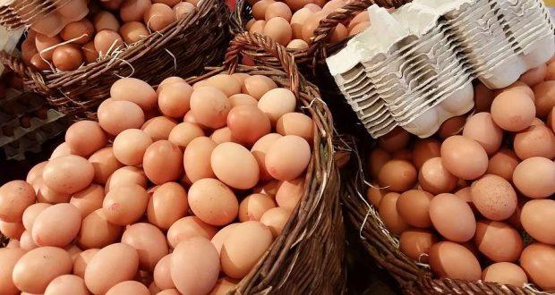 бърза закуска с яйца